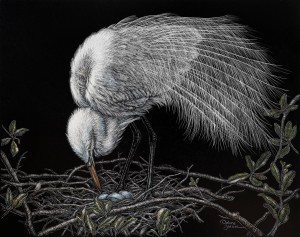 Egret With Nest
